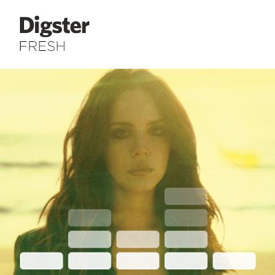 DigsterFresh11